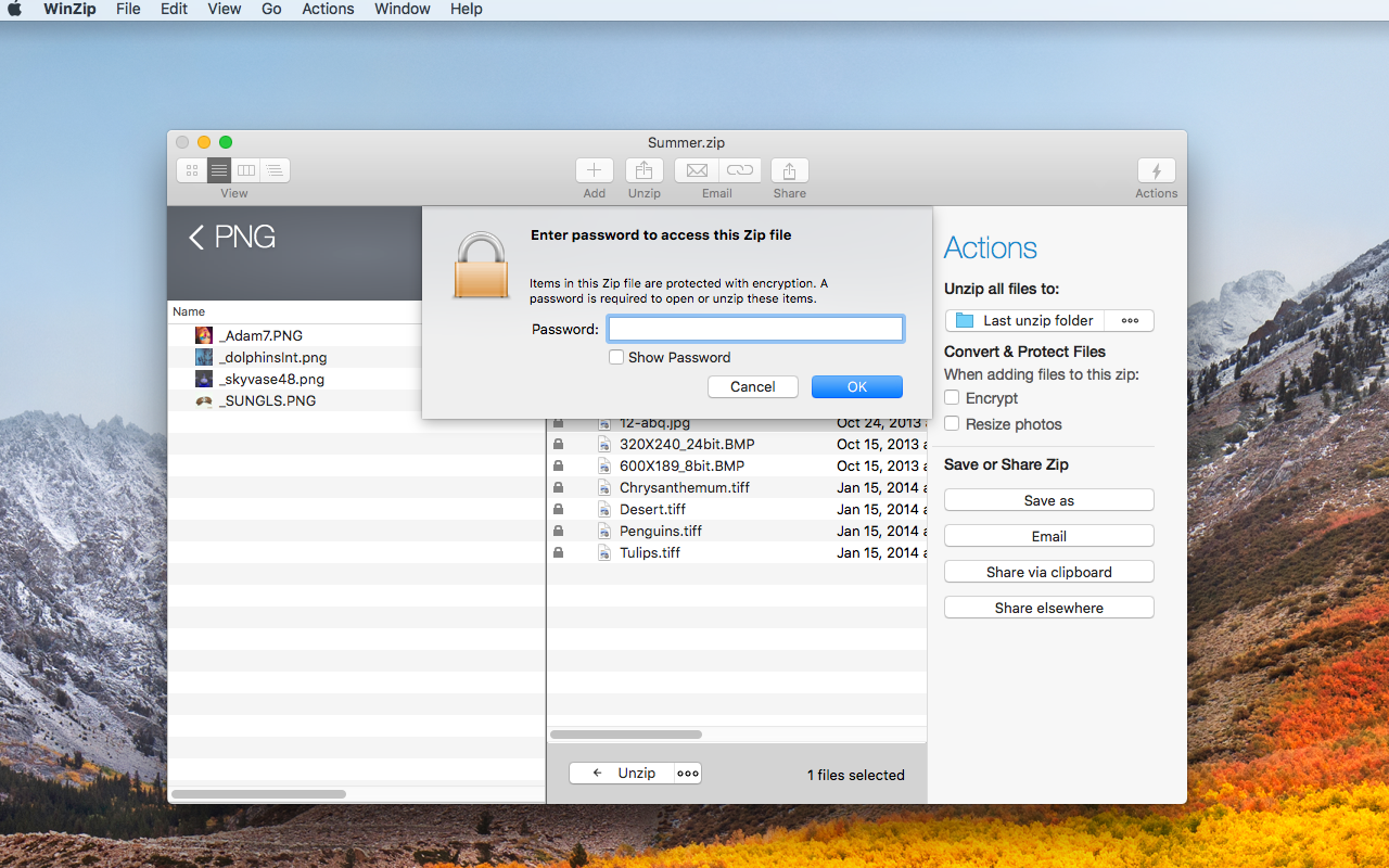 WinZip for mac 8.0.5152